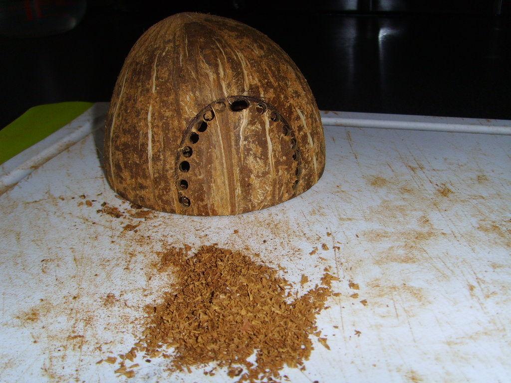 Часть кокоса