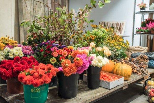 Цветы в кадках
