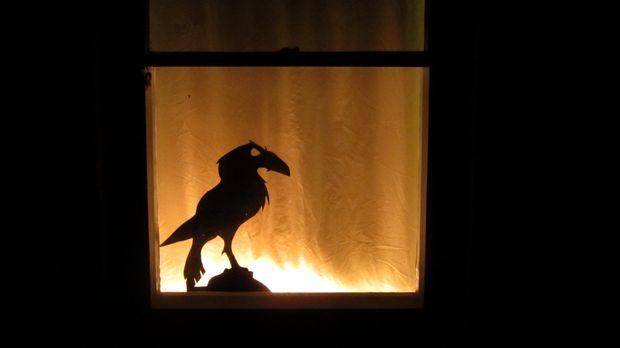 Ворон у окна