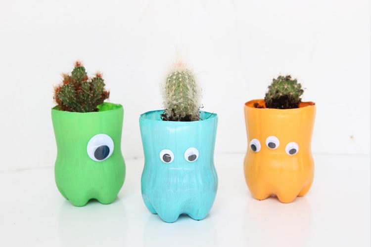 Горшки для кактуса
