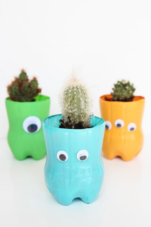 Горшки с кактусами