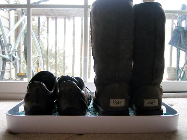 Обувь в лотке
