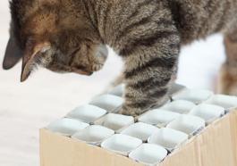Игрушка для кота из картона