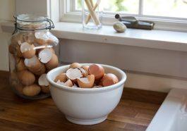 Скорлупа яиц для сада и огорода