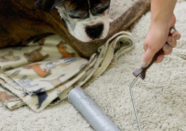 Инструмент для уборки шерсти