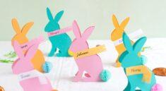 Таблички-кролики